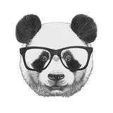 Original Drawing of Panda with Glasses. Isolated on White Background Lámina por  victoria_novak