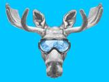 Portrait of Moose with Ski Goggles. Hand Drawn Illustration. Giclée-Premiumdruck von  victoria_novak