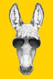 Portrait of Donkey with Sunglasses. Hand Drawn Illustration. Plakater af  victoria_novak