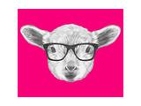 Portrait of Lamb with Glasses. Hand Drawn Illustration. Prints by  victoria_novak
