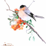 Bullfinch Prints by Suren Nersisyan