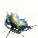 Flowers, Watercolor Illustration Photographic Print by Anna Ismagilova