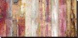 Gwydir Stretched Canvas Print by Paul Duncan
