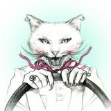 Crazy Cat in a Car .Fashion Animal Watercolor Illustration Lámina fotográfica por Anna Ismagilova