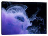 Atmosphere 24 Stretched Canvas Print by Arian Camilleri