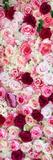 China 10MKm2 Collection - 1001 Roses Fotografisk trykk av Philippe Hugonnard