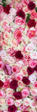 China 10MKm2 Collection - 1001 Roses Lámina fotográfica por Philippe Hugonnard