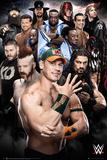 WWE- Superstars 2016 Poster