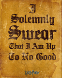 Harry Potter- I Solemnly Swear Prints