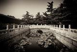 China 10MKm2 Collection - River of Gold - Forbidden City Metal Print by Philippe Hugonnard