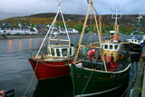Fishing Boats in Ullapool Harbour at Night, Highland, Scotland Stampa fotografica di Peter Thompson
