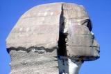 Closeup of Head Ofthe Sphinx, Period of Khafre (Chephren), 4th Dynasty, 26th Century Bc Fotografisk tryk af CM Dixon