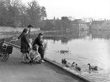 Village Duck Pond Scene, Tickhill, Doncaster, South Yorkshire, 1961 Reproduction photographique par Michael Walters