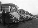 Fleet of Aec Regal Mk4S Belonging to Philipsons Coaches, Goldthorpe, South Yorkshire, 1963 Reproduction photographique par Michael Walters