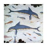 Minoan Wall-Painting of Dolphins Reproduction procédé giclée par CM Dixon