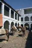 Fondouk, Chefchaouen, Morocco Stampa fotografica di Vivienne Sharp