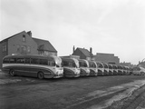 Fleet of Phillipsons Coaches, Goldthorpe, South Yorkshire, 1963 Reproduction photographique par Michael Walters