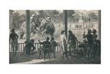 Elephant Fight at Baroda, 1896 Giclée-tryk