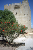Castle of Kolossi, Near Limassol, Cyprus, 2001 Photographic Print by Vivienne Sharp