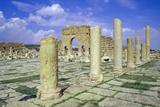 Antonine Gate and Ruined Pillars, Sbeitla, Tunisia Photographic Print by Vivienne Sharp