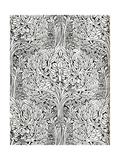 Wall-Paper Impressão giclée por W Jackson