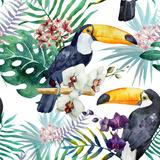 Vogels Poster van  Zenina