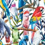 Watercolor Parrot Pattern Affiches par  Zenina