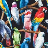 Watercolor Parrot Pattern Metal Print by  Zenina