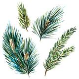 Watercolor Fir Tree Branches Metal Print by  Zenina