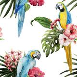 Uccelli Poster di  Zenina