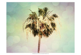 Palm Trees III Poster af Sylvia Coomes