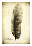 Feather on the Wind I Giclee Print by Honey Malek