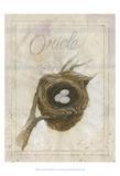 Nest - Oriole Posters par Elissa Della-piana