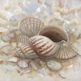 Beach Prize I Arte por Arnie Fisk