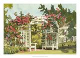 Aquarelle Garden VIII Giclee Print by Dianne Miller