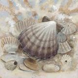 Beach Prize II Poster von Arnie Fisk
