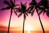 Tropical Sunset Fotografisk tryk af Mariusz Blach