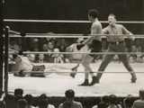 Max Schmeling on the Floor for a Count of Nine in His Match with Max Baer Photo