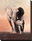 Savannah Stretched Canvas Print by Talantbek Chekirov