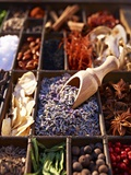 Dried Lavender Flowers with Various Spices in a Seedling Tray Fotografie-Druck von Oliver Brachat