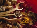 Assorted Spices in Wooden Spoons Fotografie-Druck von Ulrike Koeb