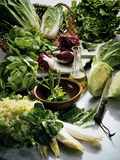 Various Lettuces Lámina fotográfica por  Teubner Foodfoto GmbH
