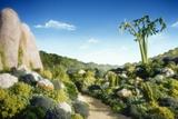 Landscape of Vegetables and Bread Valokuvavedos tekijänä Hartmut Seehuber