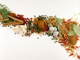 Various Spices and Dried Herbs Fotografie-Druck von Joris Luyten
