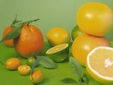 Colorful Citrus Fruit Photographic Print by Ulrike Koeb
