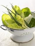 Green Salad and Chives in a Colander Lámina fotográfica por Armin Zogbaum