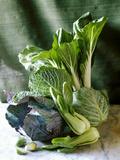 Still Life with Various Sorts of Cabbage Lámina fotográfica por Alan Richardson