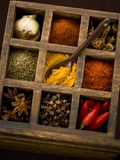Assorted Spices in Type Case Stretched Canvas Print by Greg Elms