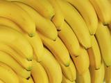 Several Fresh Bananas Lámina fotográfica por  Eising Studio - Food Photo and Video