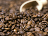 Fresh Coffee Beans Out of the Bag Lámina fotográfica por Steven Morris